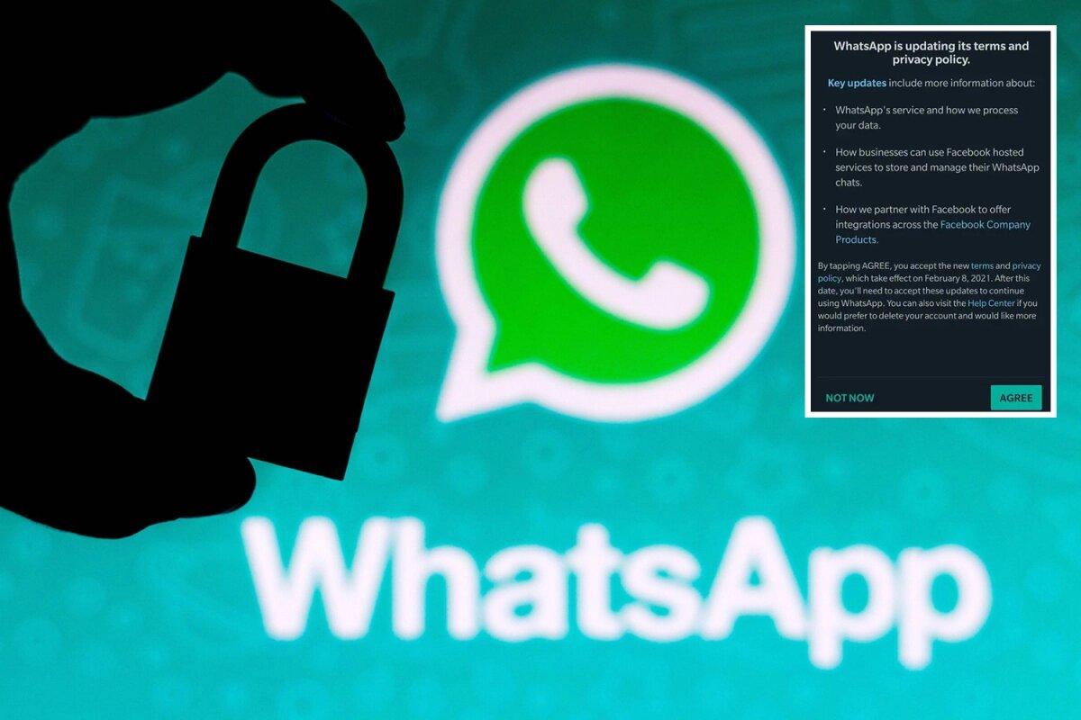 WhatsApp ની આ પ્રાઇવેસી પોલિસીની શરતો નહીં માનો તો ભરવું પડશે મોટું નુકસાન... 3
